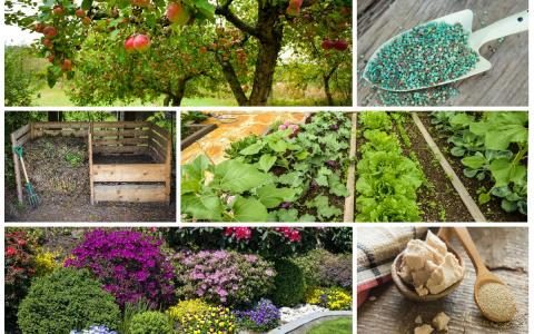 Осенние удобрения – чем подк…