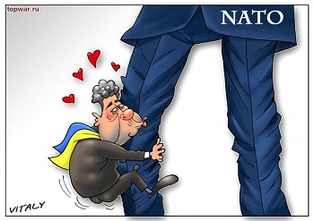Forbes назвал украинцев «обкурившимися мечтателями» о НАТО