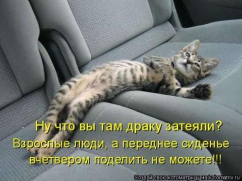 И снова пятница, и снова котоматрица!