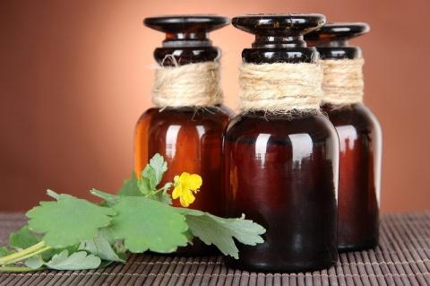 Как приготовить лечебный сок из чистотела на зиму
