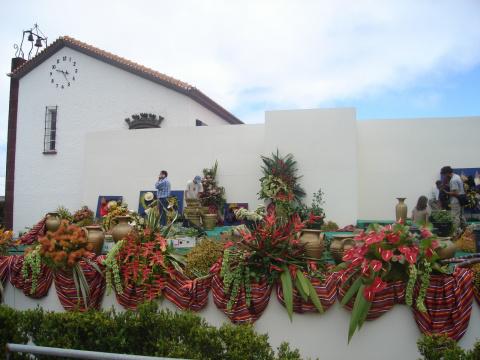 Мадейра.Сказочный остров(фото)