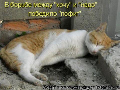 """""""Хочу """" или  """"надо"""" ??? аааа """"пофиг"""")))))"""