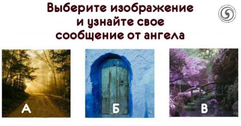 Выберите изображение и узнай…