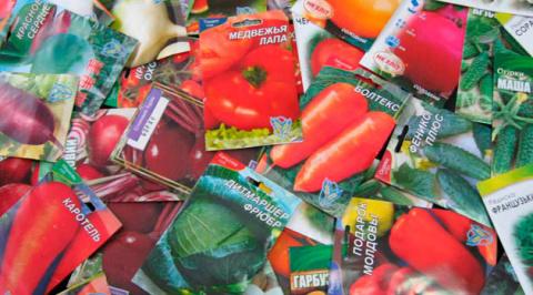 Что на самом деле написано на пакетиках с семенами?