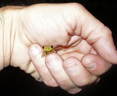 ПозитиФФ....самые маленькие на планете..!!!!!