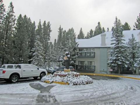 Голое человекоподобное существо, бегающее на четвереньках по снегу