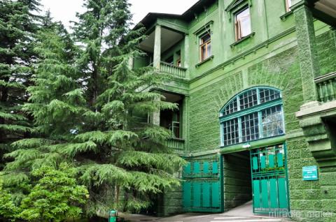 Экскурсия по даче Сталина в Сочи