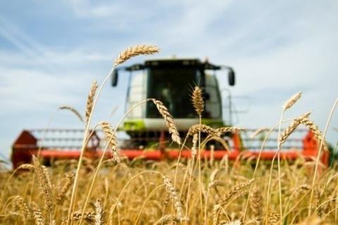 Россия обрушила фермерство в США и ЕС: санкции против Москвы сделали ее новым мировым лидером - СМИ
