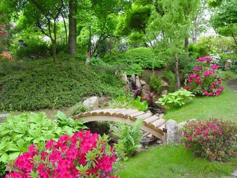Десять новшеств в садоводств…