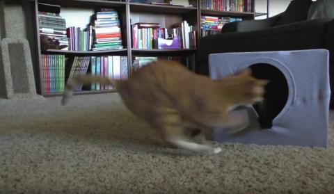 Кошачий домик за 5 минут. Ко…