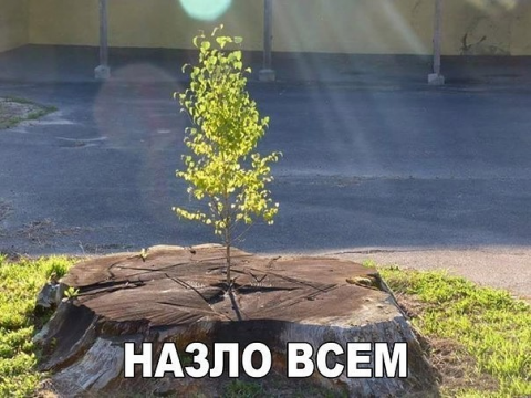 Донецк – дожди, морозы и «за…