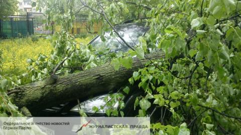 СМИ: Трагический ураган в Мо…