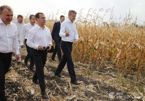 Медведев пошутил по поводу ч…