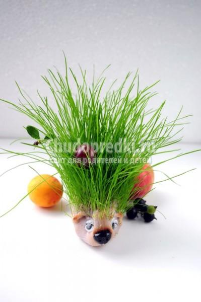 Травянчик из детского носочка ёжик «Гриня». Мастер-класс