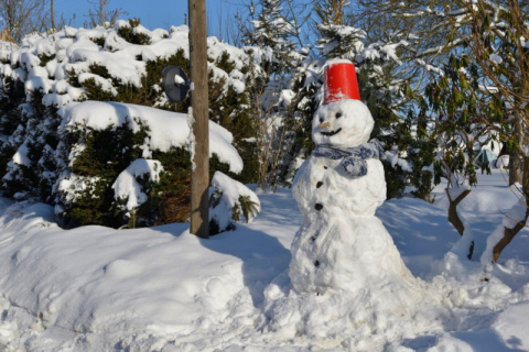 5 причин провести разок выходные на даче зимой, а не летом
