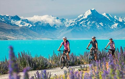 Чем порадует лето в Новой Зе…