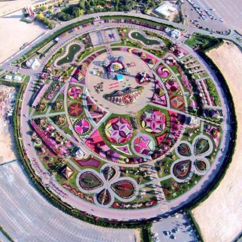 Да это 8-е чудо света! Уникальный сад в Дубае поразит даже самых придирчивых садоводов