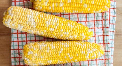 Царица полей! Благодаря этой премудрости ты сваришь лучшую в мире кукурузу.