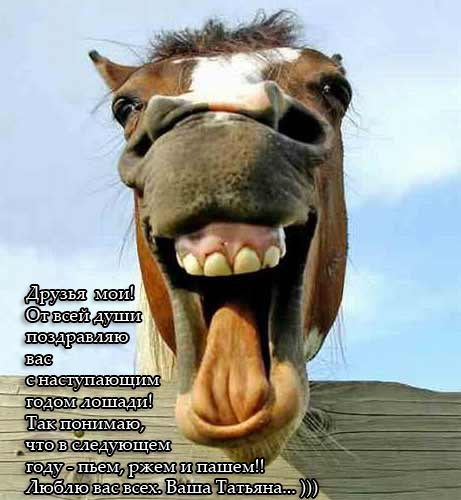 """Результаты конкурса """"Я люблю свою лошадку..."""""""