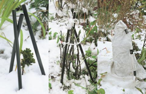 Как правильно укрыть садовые растения на зиму