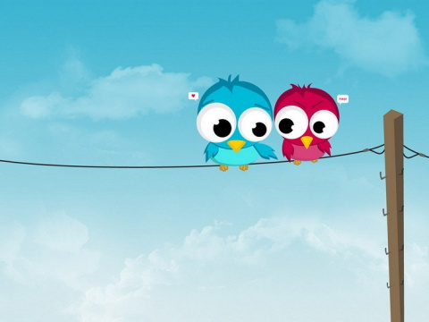 Птицы и провода — в чем секрет невредимости?