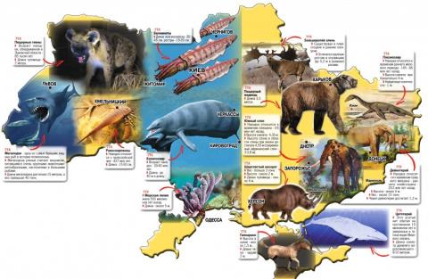 Фриковые политики современной Украины