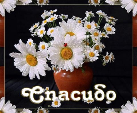 http://mtdata.ru/u21/photoA286/20941921368-0/big.jpeg