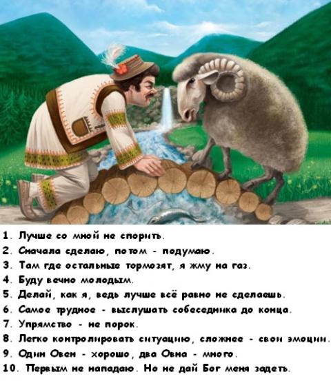 Принципов тельцов для 10