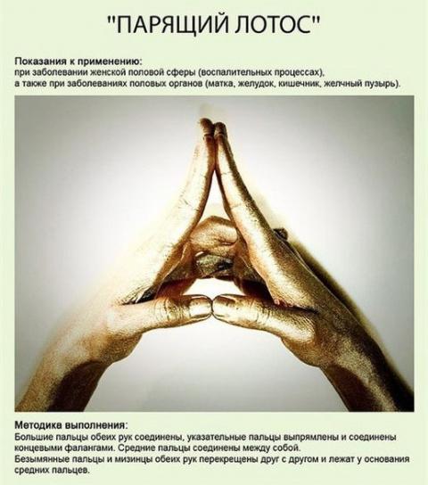 Управление внутренней энергией - МУДРЫ