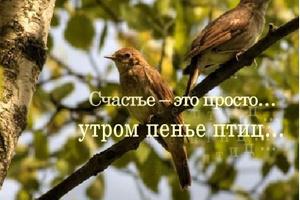Дорожите счастьем, дорожите!