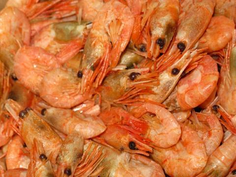 Солянка рыбная с белорыбицей, сёмгой и креветками