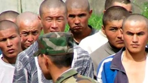 Казахи и киргизы отправят на…
