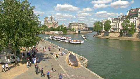 Жители Парижа нашли на набер…
