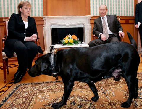 Владимир Путин и его собаки.
