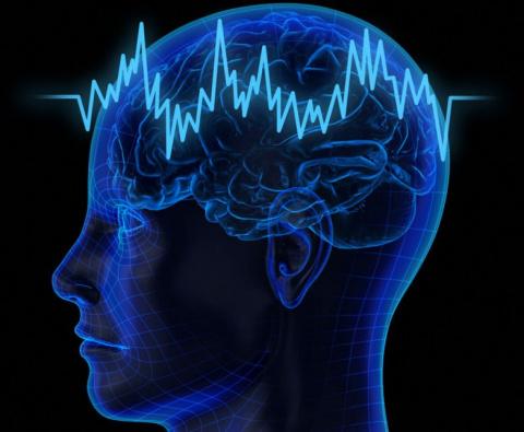 5 причин, почему наш мозг ча…