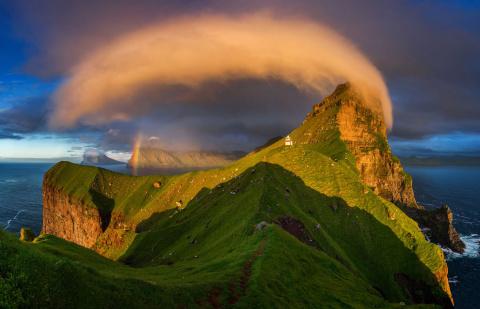 Лучшие из лучших! Победители конкурса National Geographic Nature Photographer 2017