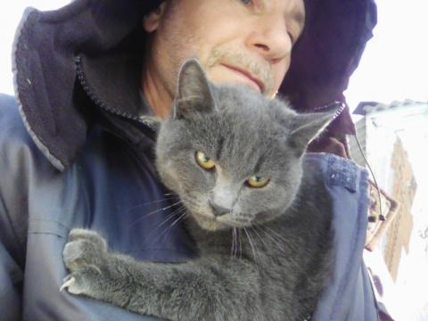 Троицкие связисты спасли породистого кота, сидевшего на электроопоре