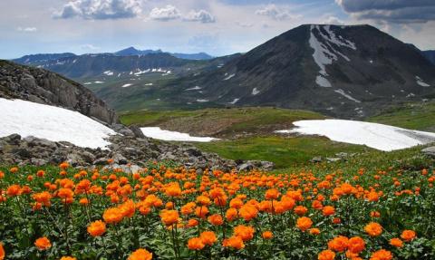 «Сибирские Альпы». Величеств…