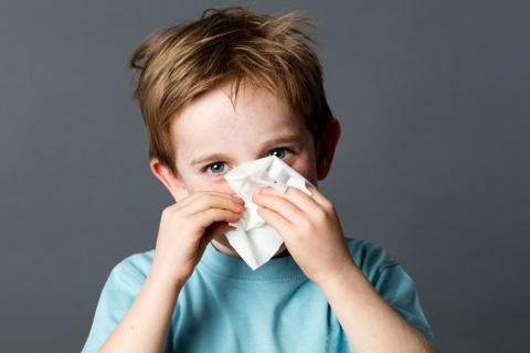 Нарушение иммунитета: провер…