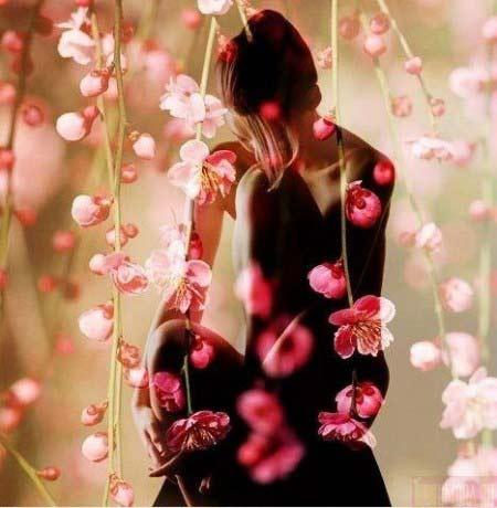 Все цветы мира для тебя!