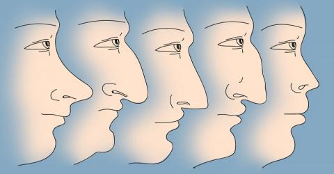Что форма носа может поведать о вашем характере!