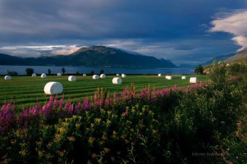 Любуемся потрясающей Норвеги…