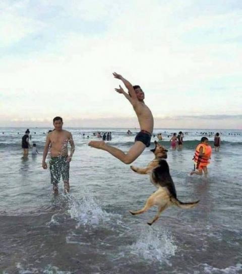 Смешные и позитивные фото пр…