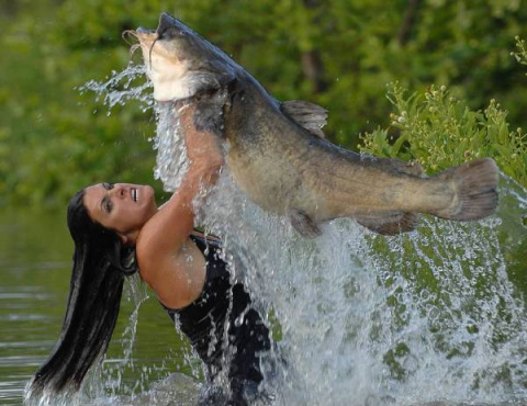 Вот это #рыбалка..Смотрите сами!