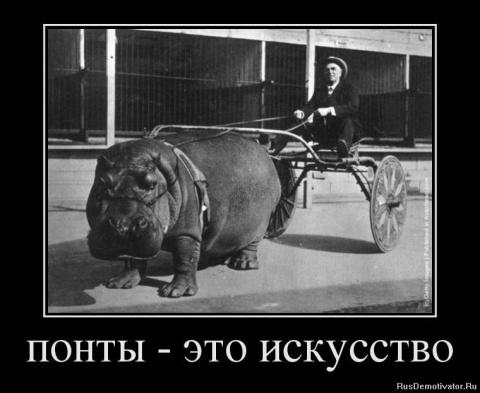 Мажор в автосалоне))Поучител…