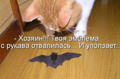 Позитивные зверушки ;)))