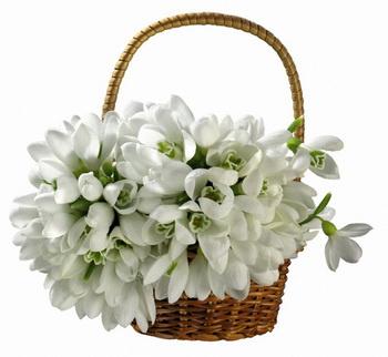 Весна, красота, любовь, подарки!