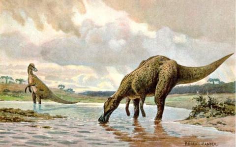 Впервые обнаружен динозавр с…