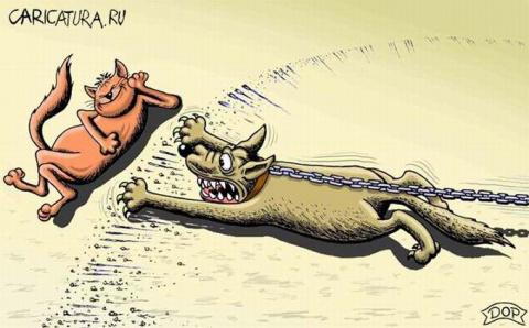 Карикатура, всякая разная...