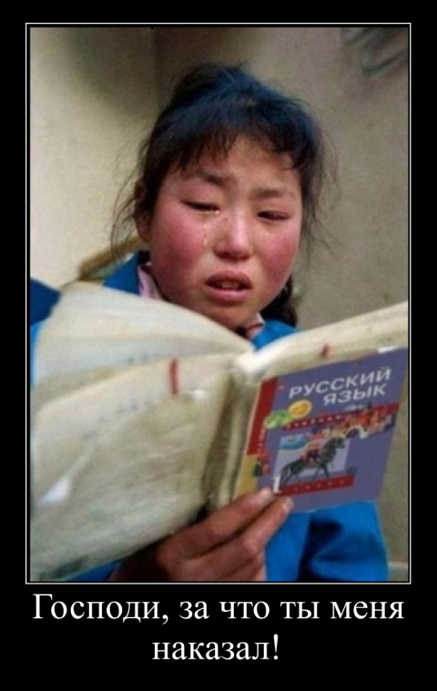 Мой русский язык...